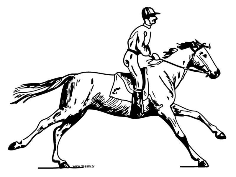 Ecole les jeunes pousses le sport du cheval - Dessin cavaliere ...
